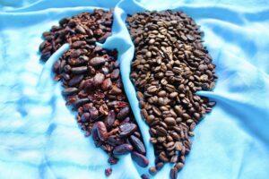 Kakao und Koffein